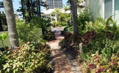 Surfers Tradewinds Holiday Apartments - Garden Path To Pool - Surfers Paradise Family Accommodation