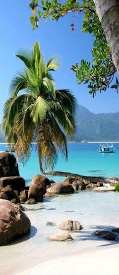 Brazil.... Just for you on http://www.exquisitecoasts.com/