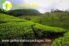 kerala packages - tour packages in kerala Kerala, Cheap Honeymoon Packages, Lake Villa, Plan My Trip, Munnar, Cool Websites, Country Roads, Tours, Holiday Packages