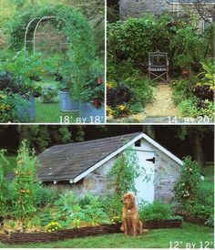 My soul is swooning. Farm Gardens, Outdoor Gardens, Backyard Farming, Permaculture Garden, Container Gardening, Vegetable Gardening, Farm Fun, Garden Inspiration, Garden Ideas