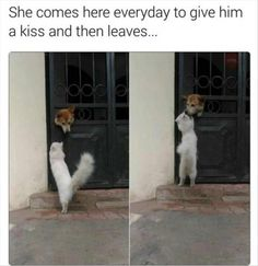 She comes here everyday to give him a kiss and then leaves... I