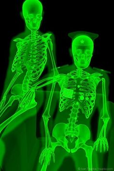 "from ""X-Ray: amateur photo"" series Artwork Dark Green Aesthetic, Rainbow Aesthetic, Aesthetic Colors, Aesthetic Collage, Aesthetic Pictures, Green Aesthetic Tumblr, Aesthetic Anime, Photo Wall Collage, Picture Wall"