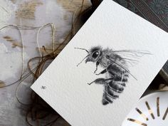 Original Graphite Illustration of a Honeybee || Drawing || Bee Art || Insect || Bug Art || Summer || Bee Keeping || Woodland || Folk || by Anthropomorphics on Etsy https://www.etsy.com/listing/240614730/original-graphite-illustration-of-a