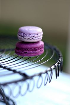 Lilac Macarons. 1. I've never had a Macaron and 2. These remind me of that spongebob squarepants episode when they have colored crabby patties.. weird but true.