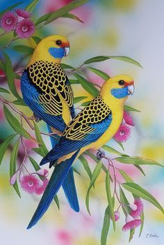 """""""Yellow Rosellas"""" by Lyn Cooke. Paintings for Sale. Bluethumb – Online Art Galle… """"Yellow Rosellas"""" by Lyn Cooke. Paintings for Sale. Cute Birds, Pretty Birds, Beautiful Birds, Animals Beautiful, Funny Birds, Exotic Birds, Colorful Birds, Vogel Illustration, Beautiful Nature Wallpaper"""