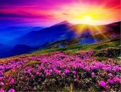 Um lindo pôr-do-sol para acabar a sexta-feira...e que venha o final de semana!