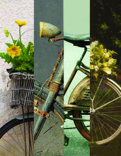 Photo Montage No. 701 I want to ride my Bicycle. Photo Montage, Bicycle, Bike, Bicycle Kick, Trial Bike, Bicycles