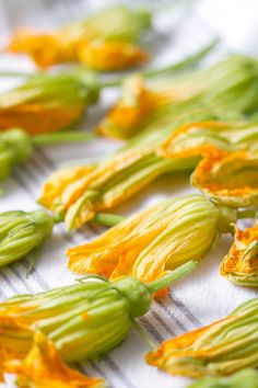 Squash blossoms are a delicious edible flower that you can find in your garden or at the farmer's market. They can be somewhat intimidating so here's how to clean and prepare squash blossoms. Squash Flowers, Zucchini Flowers, Zucchini Blossoms, Veggie Recipes, Vegetarian Recipes, Cooking Recipes, Healthy Recipes, Appetiser Recipes, Vegetarian Cooking