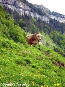 Hiking High Above Appenzell #Switzerland via @Jò in Wonderland Dombrow's Travels