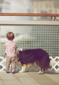dog and kid  ♡
