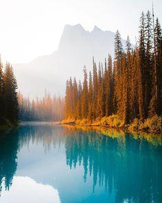 The crystal blue water of Emerald Lake, Yoho National Park : MostBeautiful Yoho National Park, National Parks, British Columbia, Landscape Photography, Travel Photography, Body Photography, Amazing Photography, Image Nature, Lake Photos