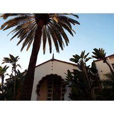 "@lilyguerraphoto's photo: ""SDSU 2 #sandiego #california #sdsu #sandiegostate #sdsuaztecs #aztecs #aztecsforlife #college #collegelife #fujifilm #fujifilmfinepix #myfujifilm #travel #travelcalifornia #tourist #californiaphotography #love #hope #winter"""