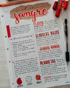 Bullet Journal Lettering Ideas, Bullet Journal Notes, Bullet Journal Writing, Bullet Journal School, Bullet Journal Ideas Pages, Cute Notes, Pretty Notes, Good Notes, School Organization Notes