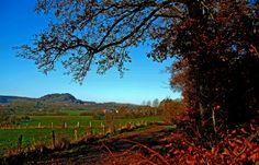 Lausig kalt, zum Glück kein Regen, ...  ist das Wetter hier ein Segen, kommt nach dem Frost dann noch die Sonne, freu`n sich alle, welche Wonne.  :-)