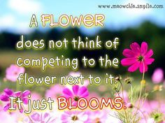 A flower does not think of competing to the flower next to it. It just blooms. – Zen Shin Talks