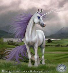 2018/01/09 Unicorn