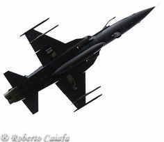 "F-5EM TIGER II""Ghost Tiger"" by Roberto Caiafa"