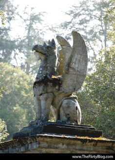 The Stone Griffins of Montalvo Road