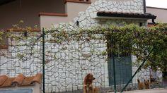 Murgia Country | Pietre Raffaele Cileo - Pietra di Trani, marmi, mosaici, graniti, chianche murgiane, edilizia, blocchi