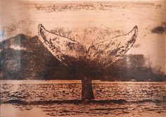 Whale Tail Whale Tail, Art Ideas, Copper, Celestial, Prints, Outdoor, Outdoors, Brass, Outdoor Games