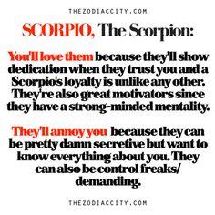 Zodiac City Scorpio Quotes Compilation: Quotes About Scorpio from ZodiacCity Astrology Scorpio, Scorpio Traits, Scorpio Zodiac Facts, Scorpio Quotes, Zodiac Sign Facts, Zodiac Quotes, Libra, Scorpio Personality, Ascendant Lion