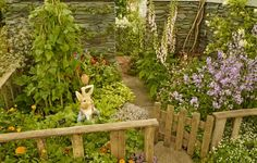 Photos from the RHS Chelsea Flower Show - The World of Beatrix Potter Attraction