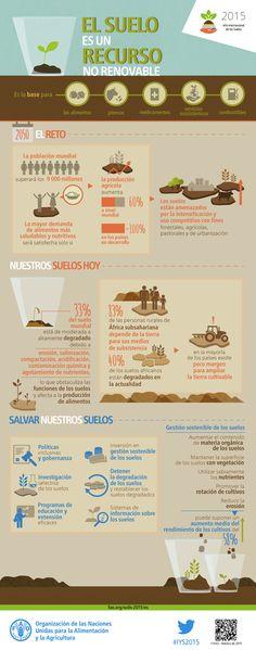El suelo es un recurso no renovable. Su conservación es esencial para la seguridad alimentaria y nuestro futuro sostenible