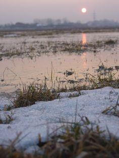 puesta del sol del invierno húngaro  SONY  CD MAVICA