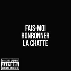 Fais-moi ronronner la chatte #LesCartons