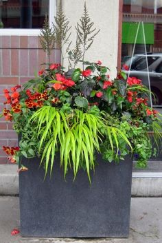 amazing container garden ideas here