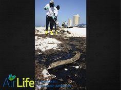 AIRLIFE te dice ¿Cuáles son las principales fuentes de contaminación por los hidrocarburos aromáticos policíclicos (pah)?  Las principales fuentes de exposición a los (pah)  para la mayoría de la población son la inhalación de los compuestos en el humo del tabaco, el humo de la madera y el aire ambiente y el consumo de los PAHs en los alimentos. http://www.airlifeservice.com