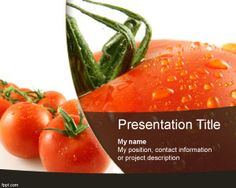 Tomato PowerPoint Template is another free vegetable PowerPoint template for presentations on foods or recipes