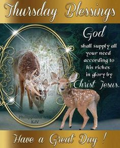 Good Morning Everyone, Happy Thursday, I pray that you have a safe and blessed day! Happy Thursday Morning, Happy Thursday Quotes, Good Morning Sister, Good Morning Thursday, Good Night Friends, Thankful Thursday, Morning Wish, Good Morning Quotes, Morning Blessings