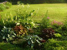 Gardens, Flowers, Plants, Outdoor Gardens, Plant, Royal Icing Flowers, Flower, Florals, Garden