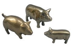 Brass Pigs, Set of 3 on OneKingsLane.com