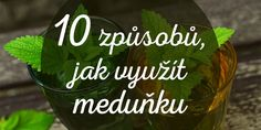10 využití meduňky Edible Flowers, Health Advice, Herb Garden, Drink Sleeves, Food Inspiration, A Table, Health And Beauty, Life Is Good, Herbalism