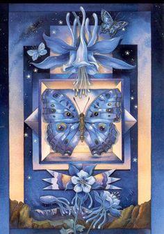 jody bergsma art -#butterfly; flowers; stars; watercolour;
