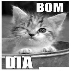 Siomara Cordeiro - Google+
