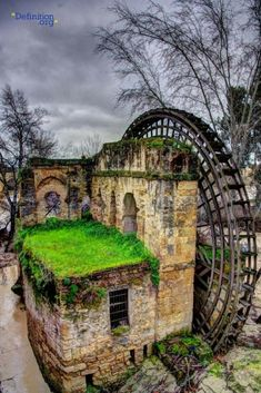 C. Chase Taylor An old, overgrown water wheel in Cordoba, Spain. Creepy or Cool?