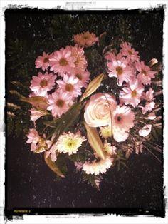 #White #love #flower #light