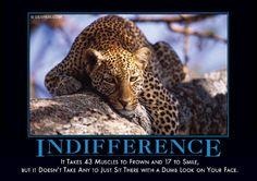 Indifference Demotivator