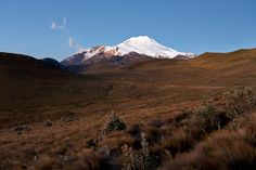 volcán Cayambe al atardecer  