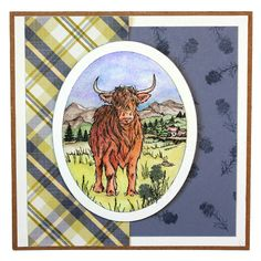 'Highland Cattle' Clear set contains 12 stamps. All our clear stamps are made with photopolymer resin. The Monthly Special includes a free Project sheet with step by step instructions on how to make 2 Highland Cattle, Scottish Tartans, Art Cards, Highlands, Clear Stamps, Cows, Stamping, Card Ideas, Ethnic