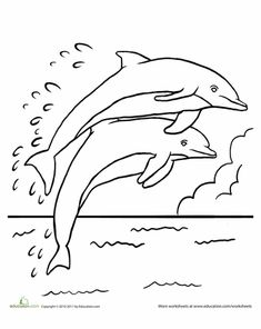 A Group Of Dolphins In Open Water Area Coloring Page
