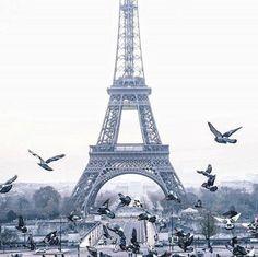 Repost @superchinois801 #paris #travel #trip #traveling #visiting #instatravel #fun #photooftheday #tourism #tourist #instatraveling #travelgram #igtravel #nature #beachlife #adventure #landscape #naturelovers #beauty #olympus #olympus_ru #instagood #summer #amazing #bestoftheday via Olympus on Instagram - #photographer #photography #photo #instapic #instagram #photofreak #photolover #nikon #canon #leica #hasselblad #polaroid #shutterbug #camera #dslr #visualarts #inspiration #artistic…