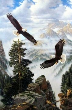 Derk Hansen paints a pair of majestic eagles soaring through a foggy mountain ravine after A PASSING STORM. Bald Eagles can fly up to an altitude of feet, and maintain a hunting area of up to 1 Eagle Images, Eagle Pictures, Beautiful Birds, Animals Beautiful, Nicolas Vanier, Philippine Eagle, Eagle Painting, Eagle Art, Birds Of Prey