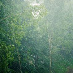 Rainfall Warning In Southwestern Ontario