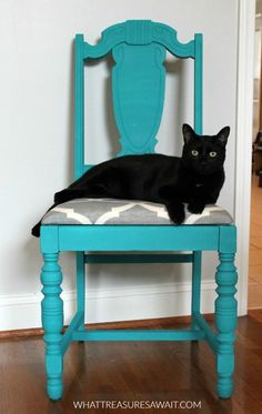 The cat loves this new colorful chair with chalky finish spray paint!