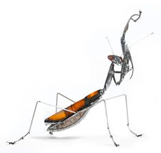 Magnificent Praying Mantis - When Edouard Martinet was 10, one of his teachers…