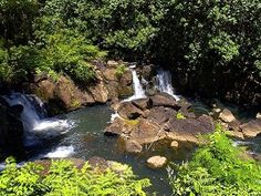 Amazing Waterfall Outside Your Window. Peaceful North Shore KauaiVacation Rental in Kilauea from @HomeAway! #vacation #rental #travel #homeaway